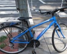 My beloved 1st adult bike