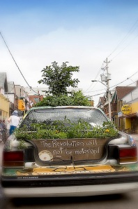 guerrilla gardening by fullyreclined Flickr Creative Commons